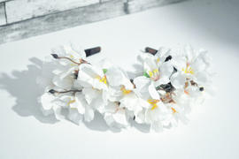 Corona Blossoms | Hauterent